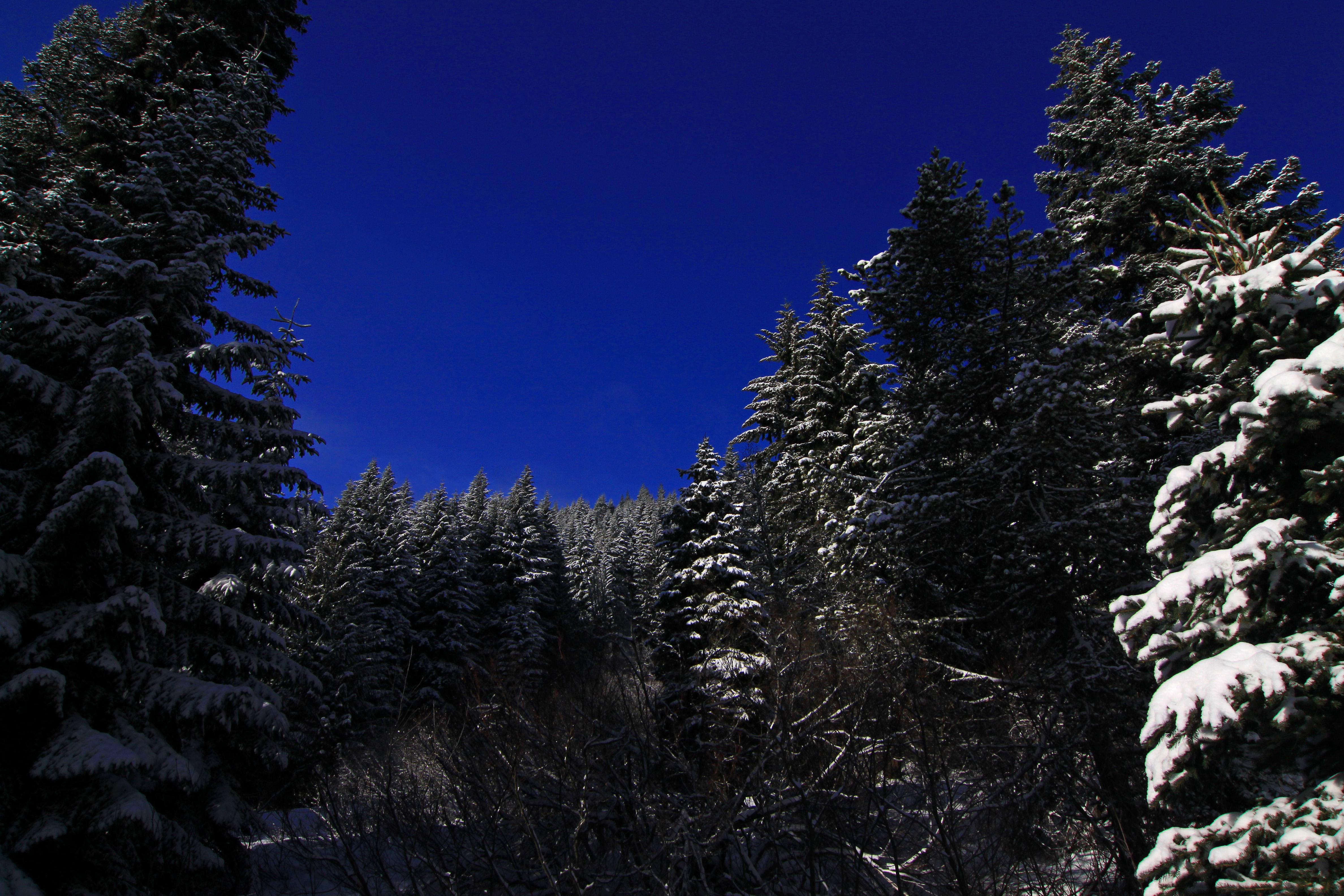 Still sunny in the Cascades