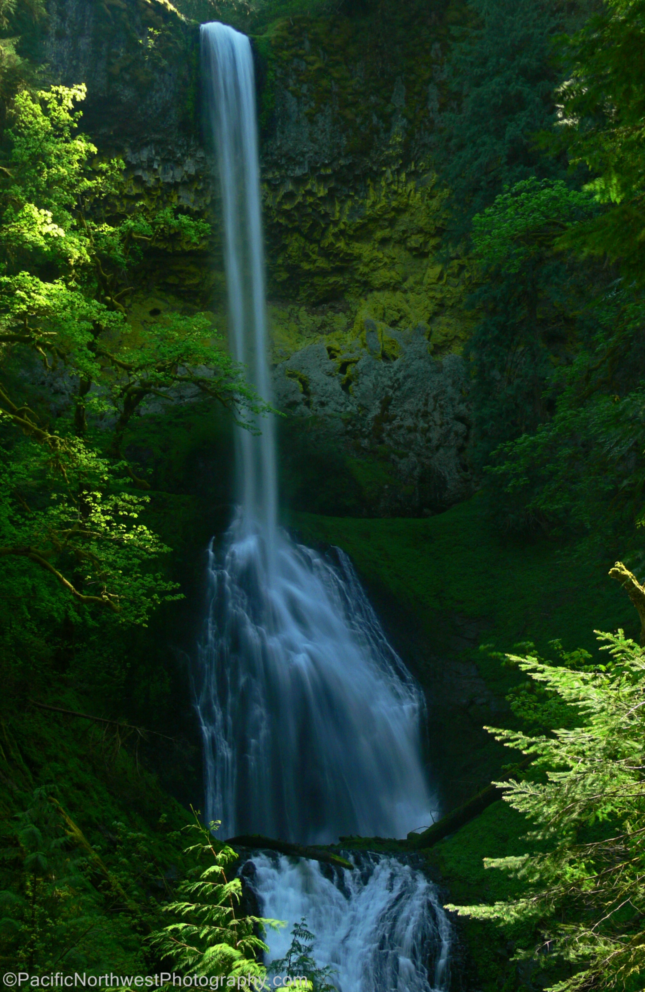 Pup Creek Falls on the Clackamas River