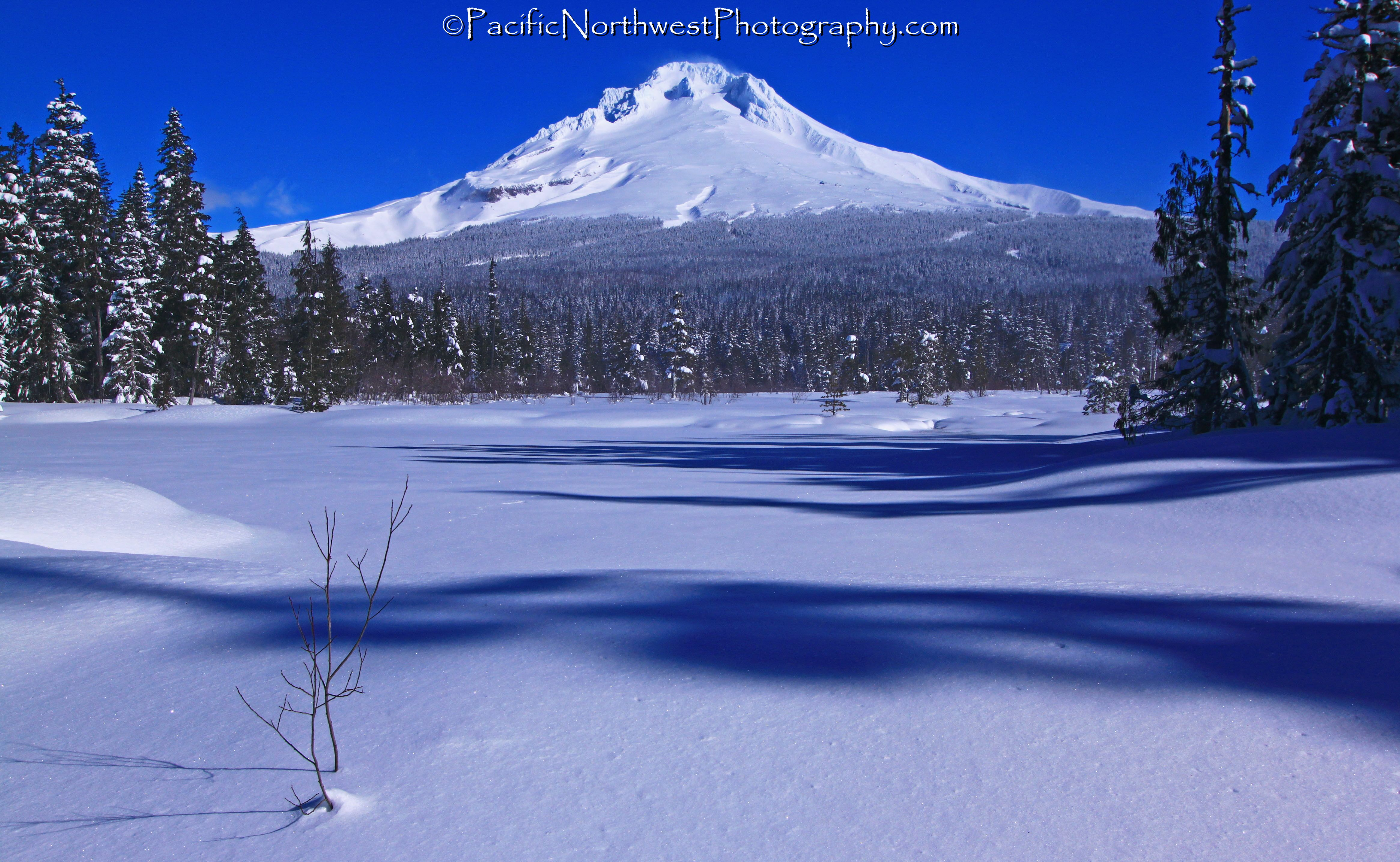 Snow-shoeing near Mt. Hood, OR