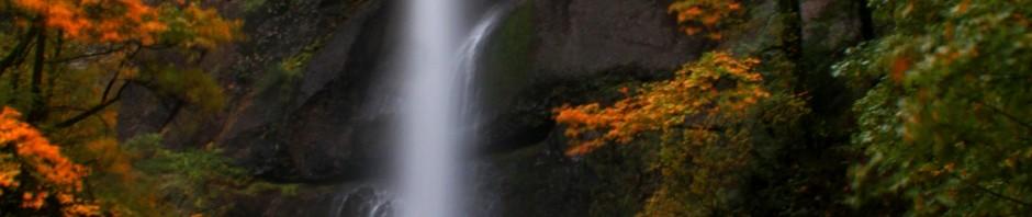 Fall foliage at Multnomah Falls
