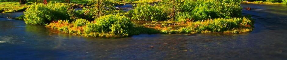 Fall Creek, OR