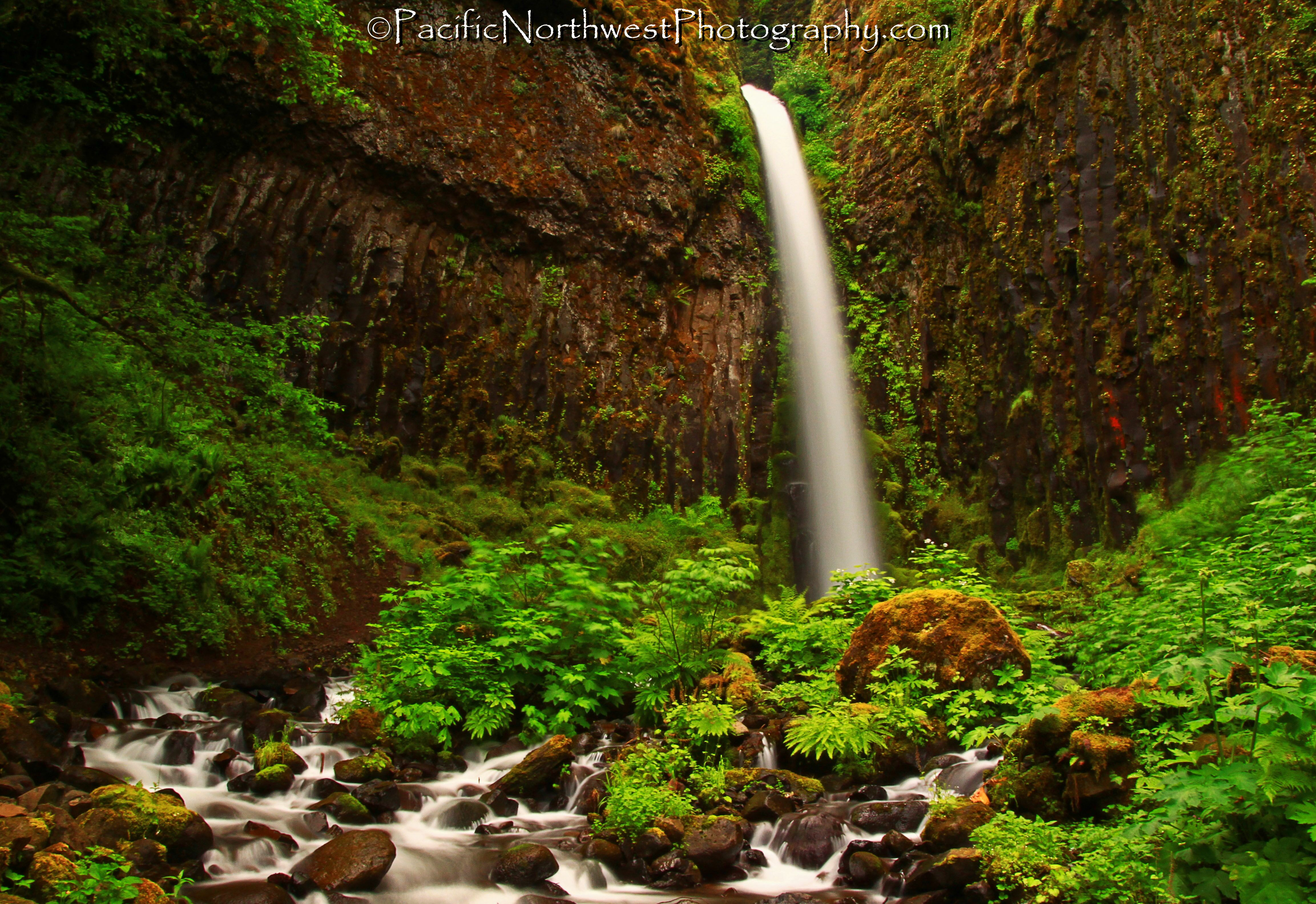 Dry Creek Falls, Oregon