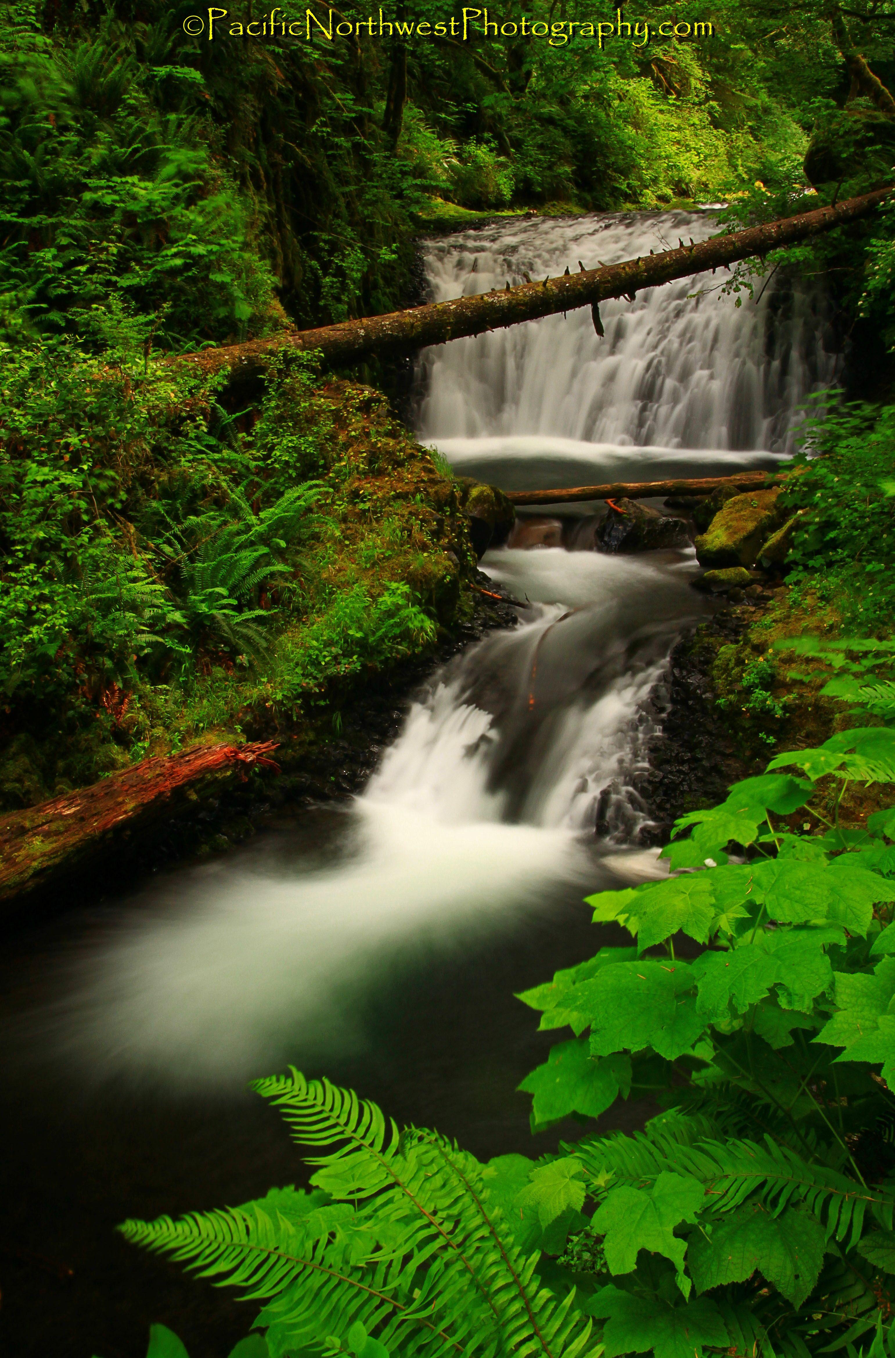 Oregon waterfall