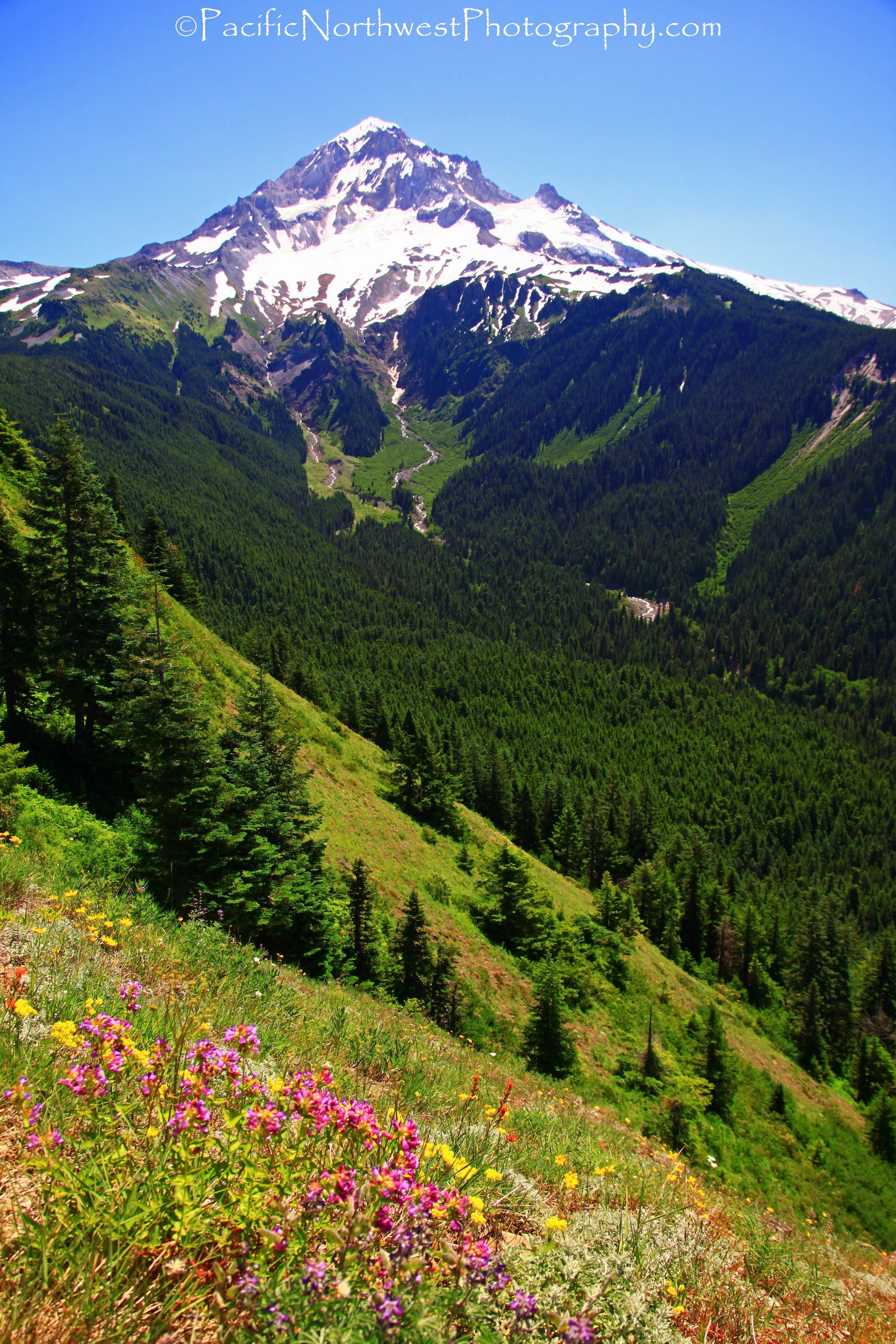Beautiful Mt. Hood, Oregon
