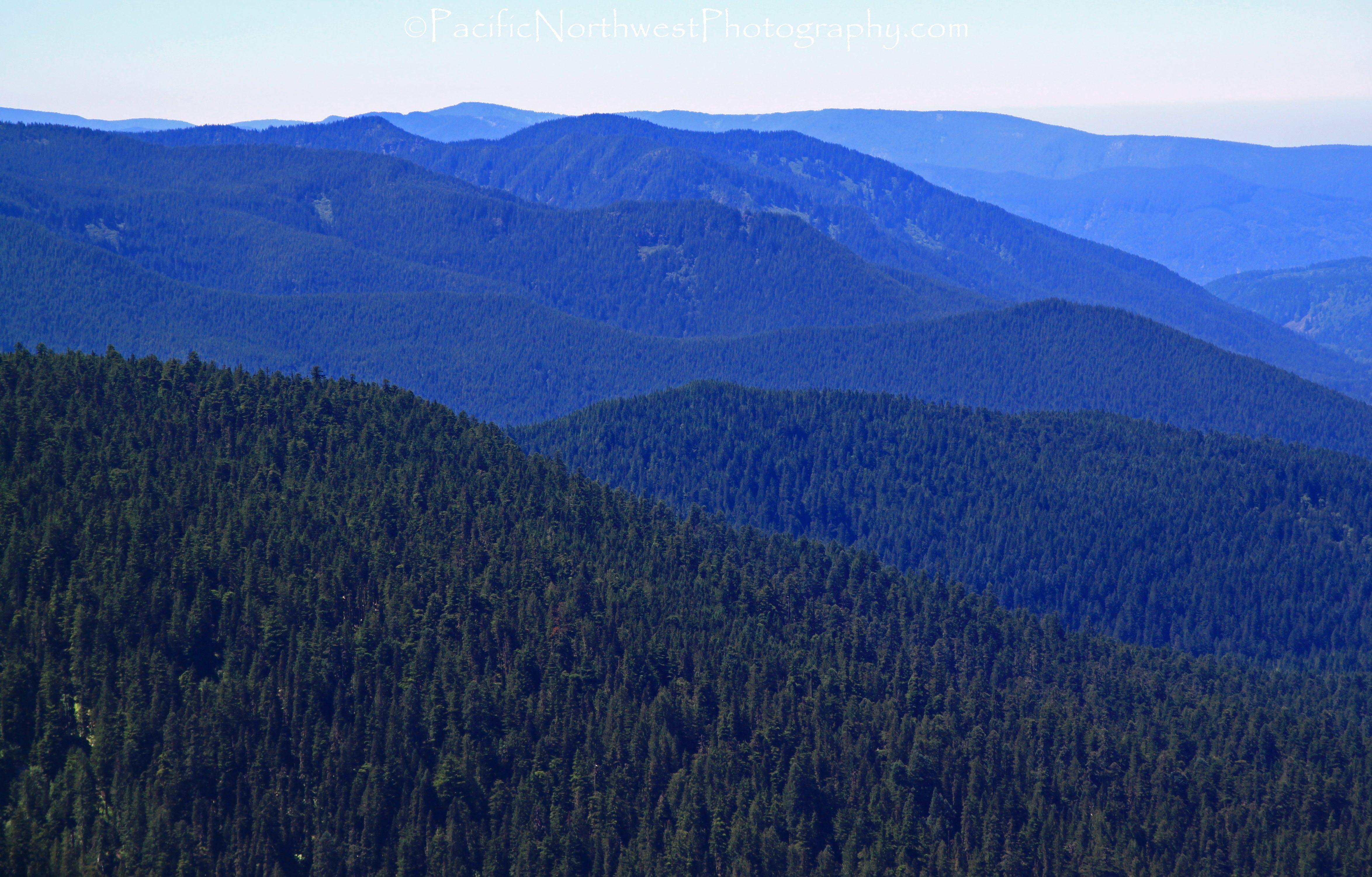 Oregon Cascade Foothills